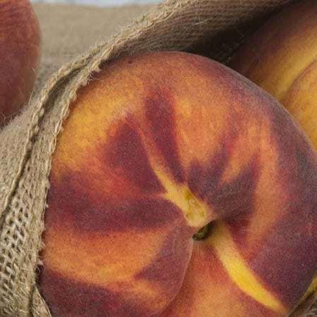 Prodaja sadnica breskve